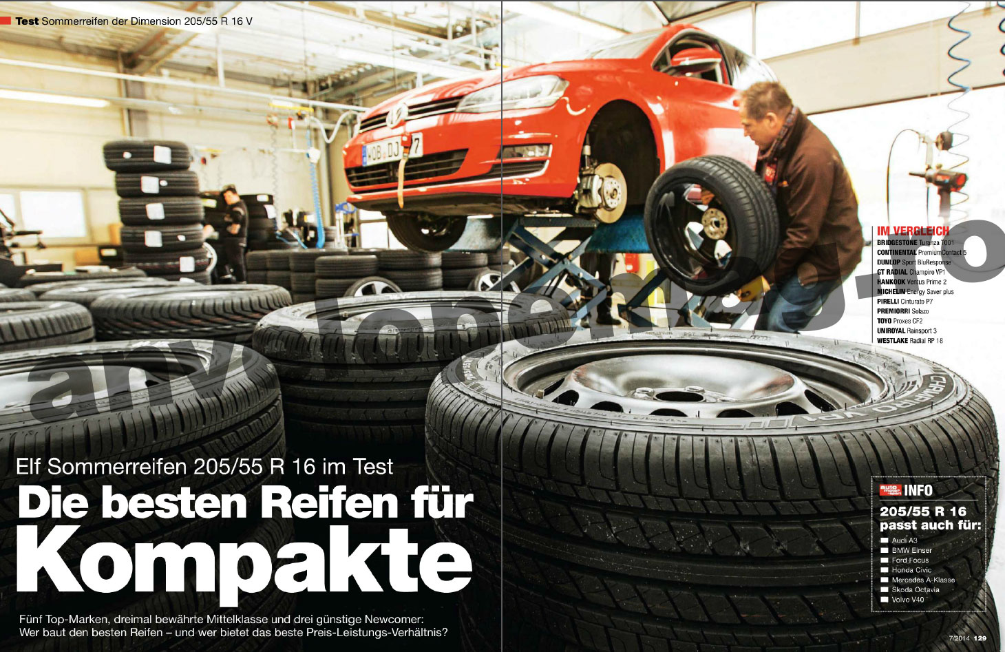 Test 205/55R16 Auto Motor und Sport