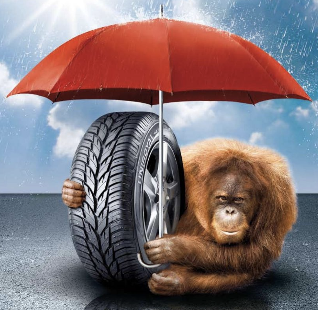 Promotie umbrela Uniroyal